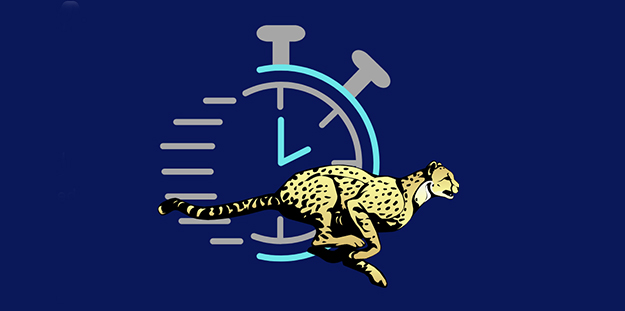 Illustration of a stop watch and a cheetah running past the watch